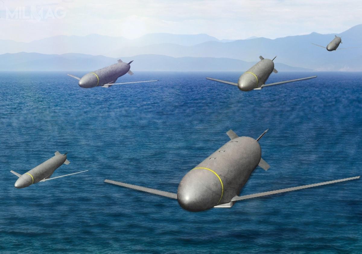 Program Gray Wolf zakładał opracowanie niedrogich pocisków manewrujących działających wroju. AFRL uznało najwyraźniej, żetaniej iprościej będzie wykorzystać dotego istniejące systemu uzbrojenia, niż projektować nowe / Grafika: Lockheed Martin
